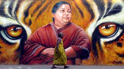 From Ammu To Amma, This Book Brings Alive J Jayalalithaa's Incredible Journey Over The