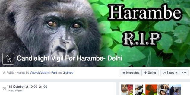 Delhi Students Are Organising A Candlelight Vigil For Harambe, The Slain