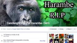 'Harambe Tere Saath Hain Hum': Delhi Students Are Organising A Candlelight Vigil For Harambe The