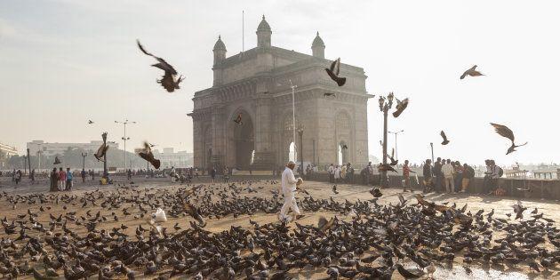 Pigeons, India Gate, Colaba, Mumbai (Bombay),