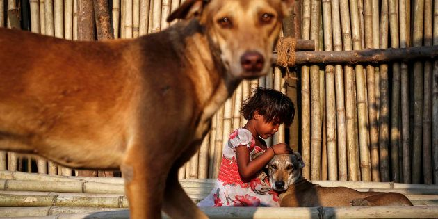 A six year-old-girl plays with street dogs on bamboo sticks at a timber market in