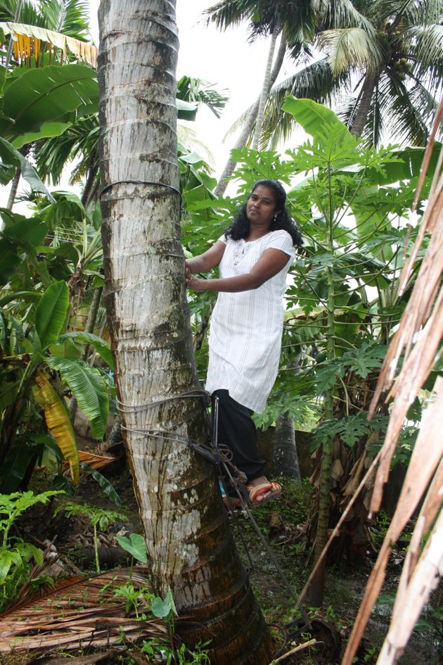 India's Most Famous Government School And A Woman Who Climbs Coconut Trees For A