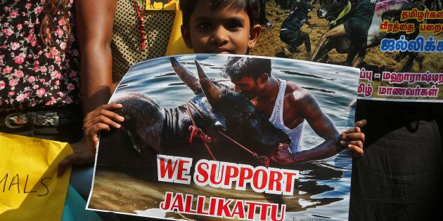 Has The Jallikattu Uprising Created A New Political Space In Tamil