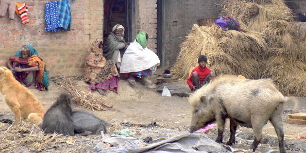 The Musahar community is still living in squalor across villages in