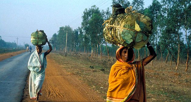 Women carrying head loads is a common sight all over