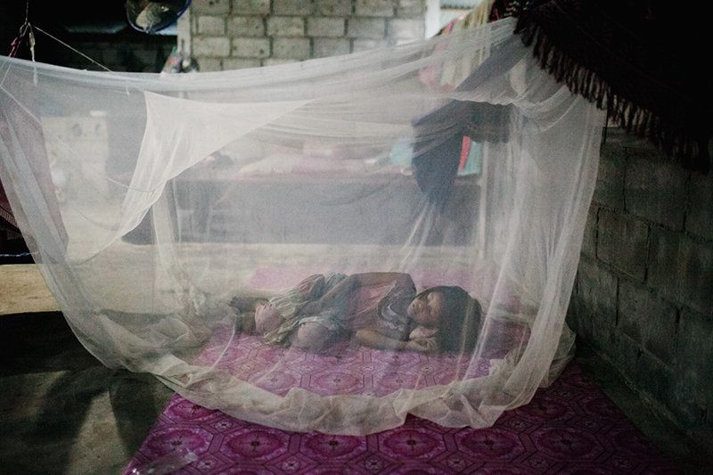 A young girl sleeps under a mosquito net. The bed net is a critical tool for malaria
