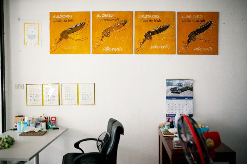 The inside of a health clinic in Thailand. The wall is adorned with posters of four species of Anopheles mosquitoes, which are malaria vectors.