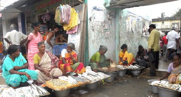 This Mobile App Is A Real Catch For Tamil Nadu