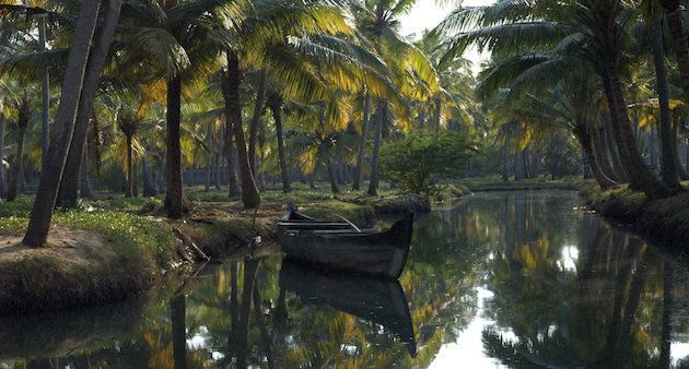 Wetlands are the lifeline of much of rural Kerala. Still many wetlands and small canal systems like the...