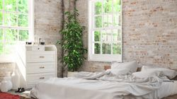Having One Of These Houseplants In Your Room Can Help You Sleep