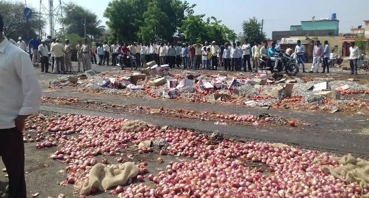 Farmers protested and threw away their onion harvest as prices crashed. (Photo by Atul Deulgaonkar)