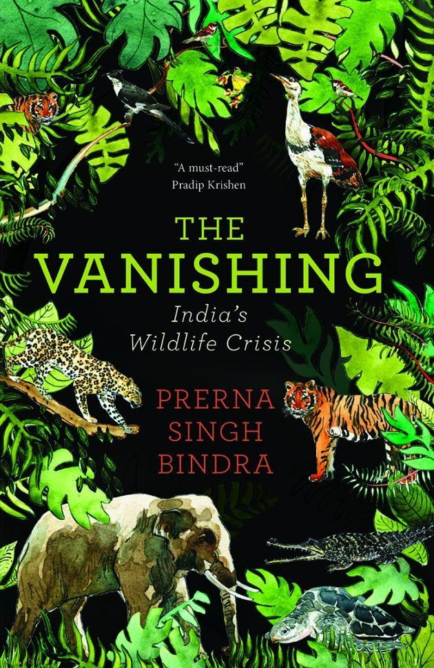 'The Vanishing' Shows How Our Model Of 'Development' Is A Recipe For