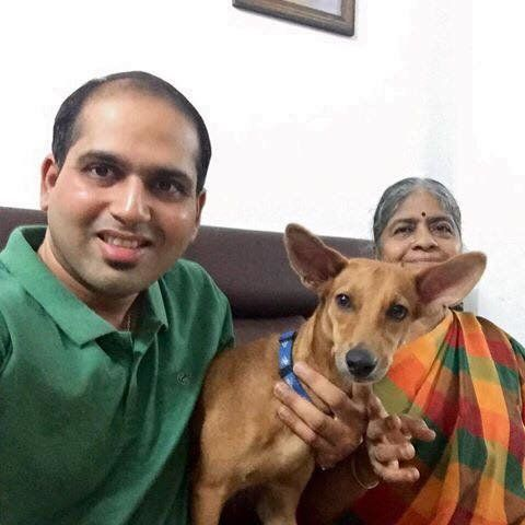 A Year After She Was Flung Off A Building In Chennai, Bhadra Is A Happy Pupper In Her New