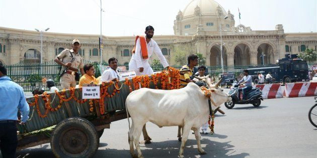 BJP MLA Who Made A Grand Entrance At The UP Assembly Riding A Bullock Cart, 'Forgot' To Pay The