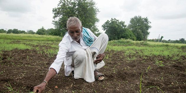 Using treated wastewater means Serigudam Sailu can now grow coriander as an income