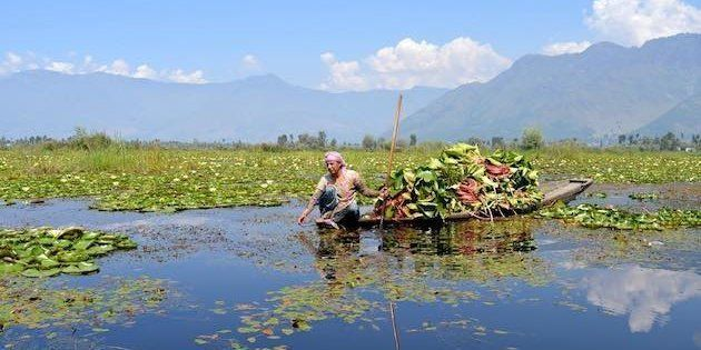 Fishing and other rural communities that have traditionally depended on Wular Lake are now struggling...