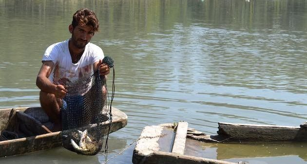 Shiraz Ahmad Goroo shows his meager catch while complaining about dwindling fish in River Jhelum. (Photo...