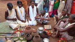 Niyamgiri Adivasis Revive Wild Harvest After Vanquishing Mining Giant