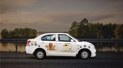 Pune's Petxi Taxi Service Is An Uber For Strays And Pet