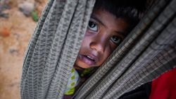 India Should Not Tolerate Rohingya Muslims, Says Chief Of Premier Social Sciences
