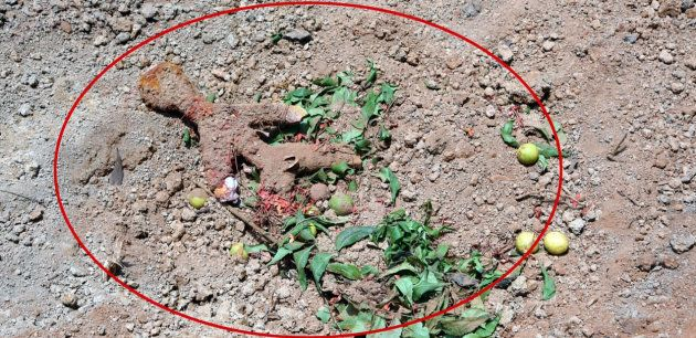 Voodoo doll found at the Nandigudda Graveyard in Mangalore city in May, 2018.