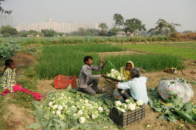 In the heartland provinces, demonetisation was trashed by the farmers for sapping the life blood of the...