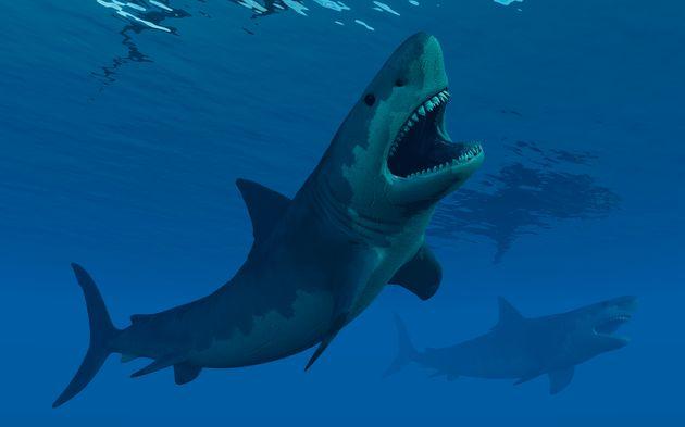 Έρευνα: Στο Διάστημα το πιθανό αίτιο εξαφάνισης πολλών προϊστορικών θαλασσίων