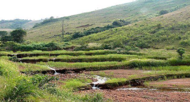 Farmland in Bilaput,