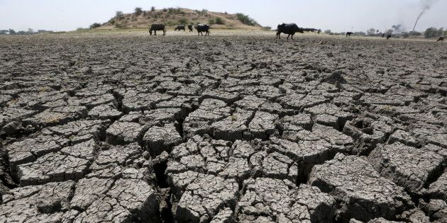 India Must Lead Climate Action In The Region For Its Own National