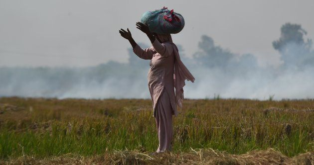 A woman looks on near burning straw stubble at a field in Barana