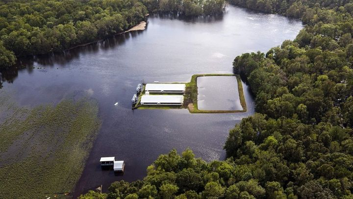 Floodwater from Hurricane Florence creeps up on hog houses and a lagoon where hog waste is stored. At least 33 such lagoons o