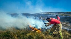 Manchester Moorland Fires Had A Harmful Impact On Air Quality, Researchers