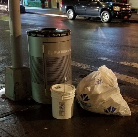 The second bucket containing a cat, left near a public trash can on a corner near Animal