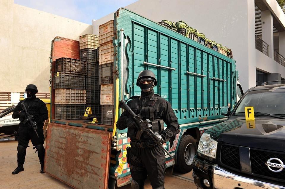Une ferme de trafic international de cocaïne localisée par le BCIJ près de
