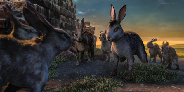 'Watership Down': 18 Facts You Didn't Know About The New