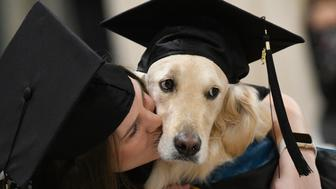 """Griffin"" Hawley, the Golden Retriever service dog, is given a congratulations hug by his owner Brittany Hawley after being presented an honorary diploma by Clarkson, during the Clarkson University ""December Recognition Ceremony"" in Potsdam, N.Y., Saturday Dec. 15, 2018. Griffin's owner, Brittany Hawley, also received a graduate degree in Occupational Therapy. Both attended 100% of their classes together. (AP Photo/Steve Jacobs)"
