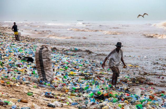Teller, Trinkhalme: EU einig über Verbot von Einweg-Plastik