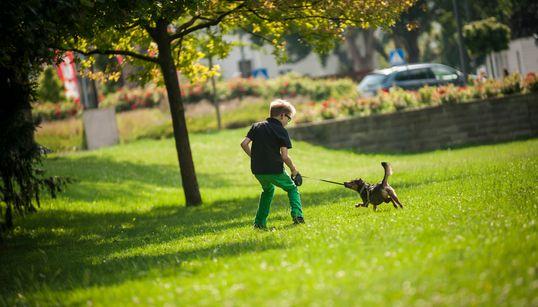 Έρευνα της ΕΛ.ΑΣ. για το παιδί που κρεμάστηκε παίζοντας στο Παλαιό