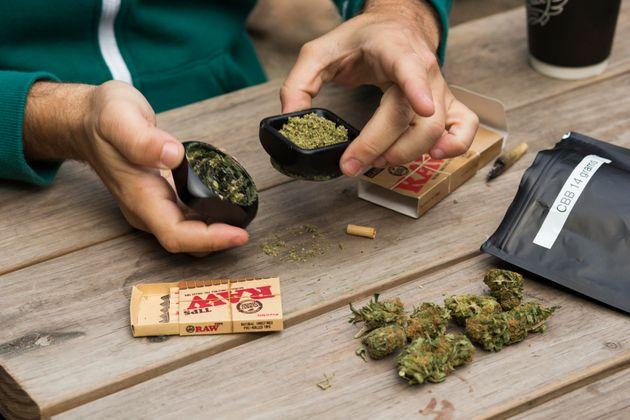 뉴질랜드가 오락용 마리화나 합법화 국민투표를