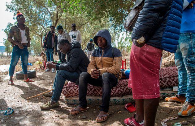 Des migrants dans la forêt deBoukhalef à