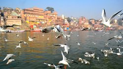 Ganga Clean At Just 1 out of 39 Locations, Reveals New