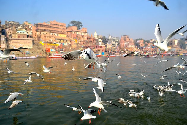Ganga Clean In Just 1 out of 39 Locations, Reveals New