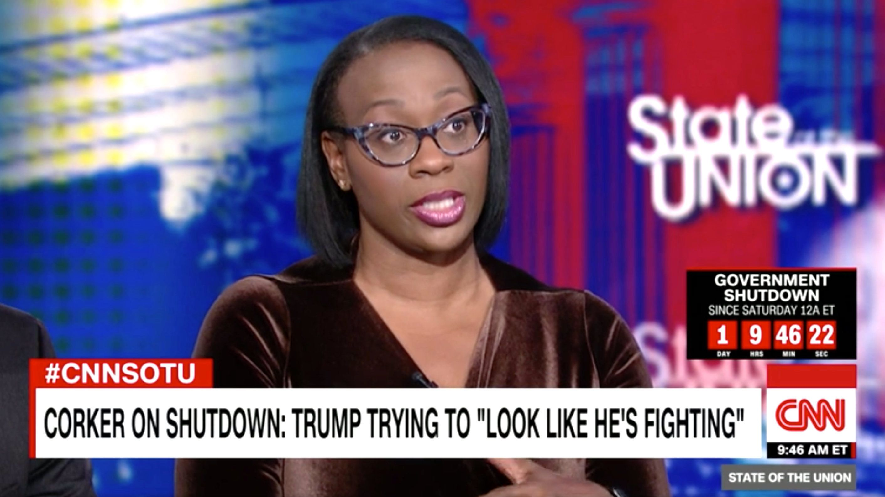 CNN political commentator Nina Turner said the federal government shutdown reminded her of the dystopian Hunger Games saga.