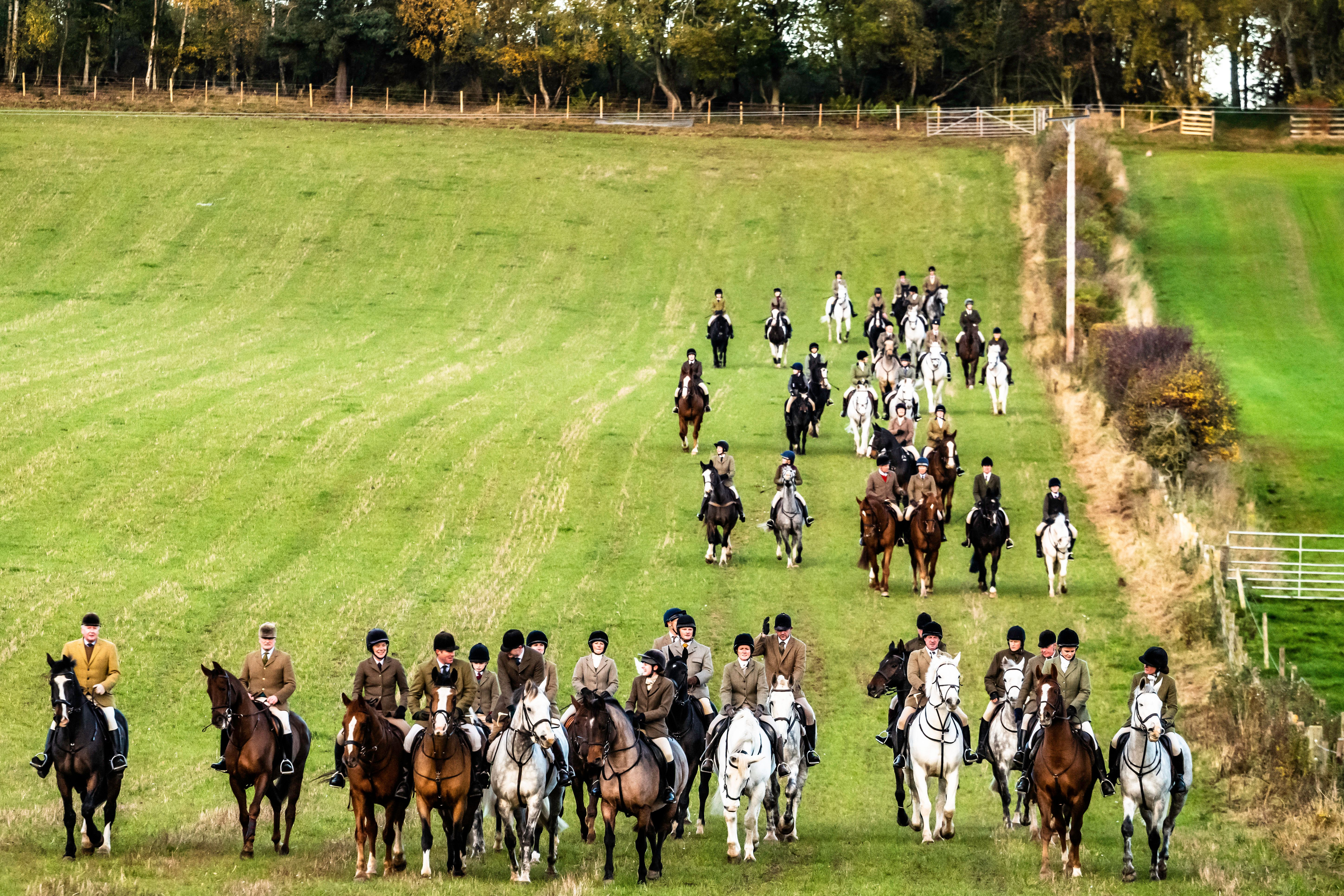 Labour To Consider Jail Terms For Illegal Hunts In A Bid To Strengthen