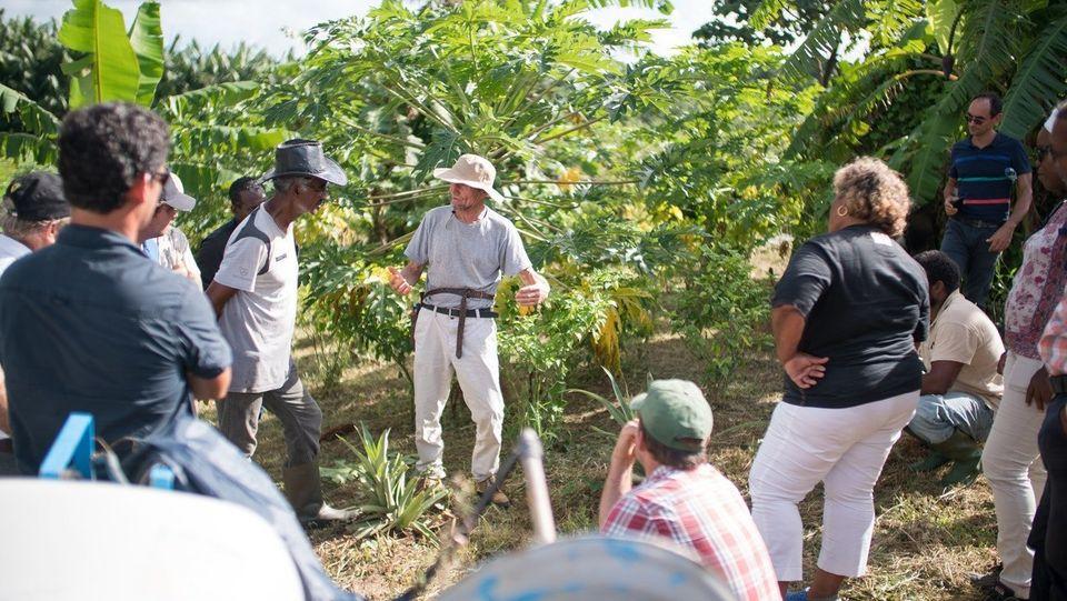 Ernst Götsch bei einem Workshop auf der Karibikinsel Martinique