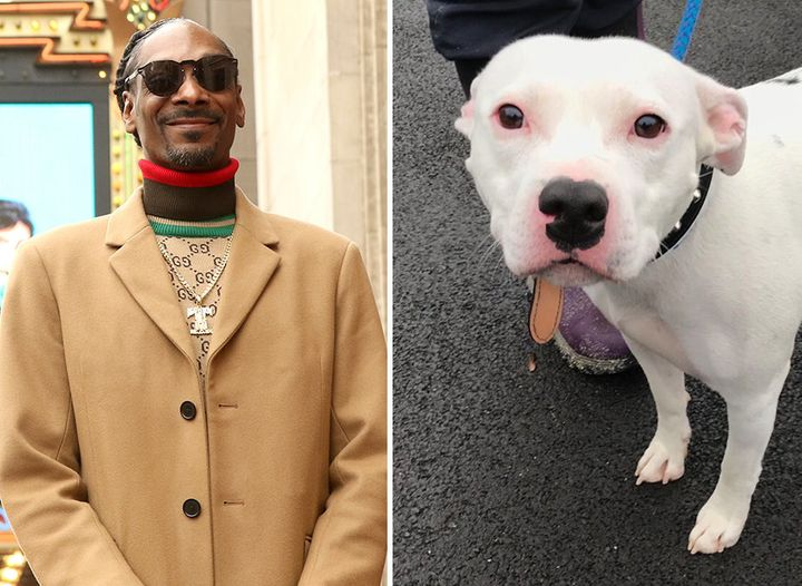 Snoop Dogg and Snoop the dog.