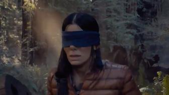 Sandra Bullock film inspires 'Bird Box' Challenge