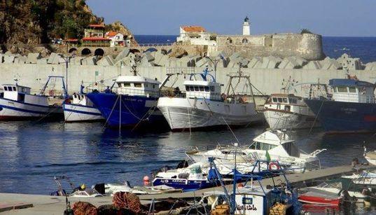 Skikda: plus de 200 pêcheurs soumis à une enquête nationale économique et