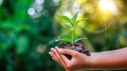 How To Be More Eco-friendly This January With Minimal