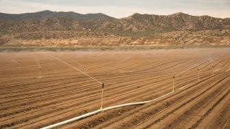 California Drought; Irrigating fields on the edge of the desert in the Cuyama Valley.